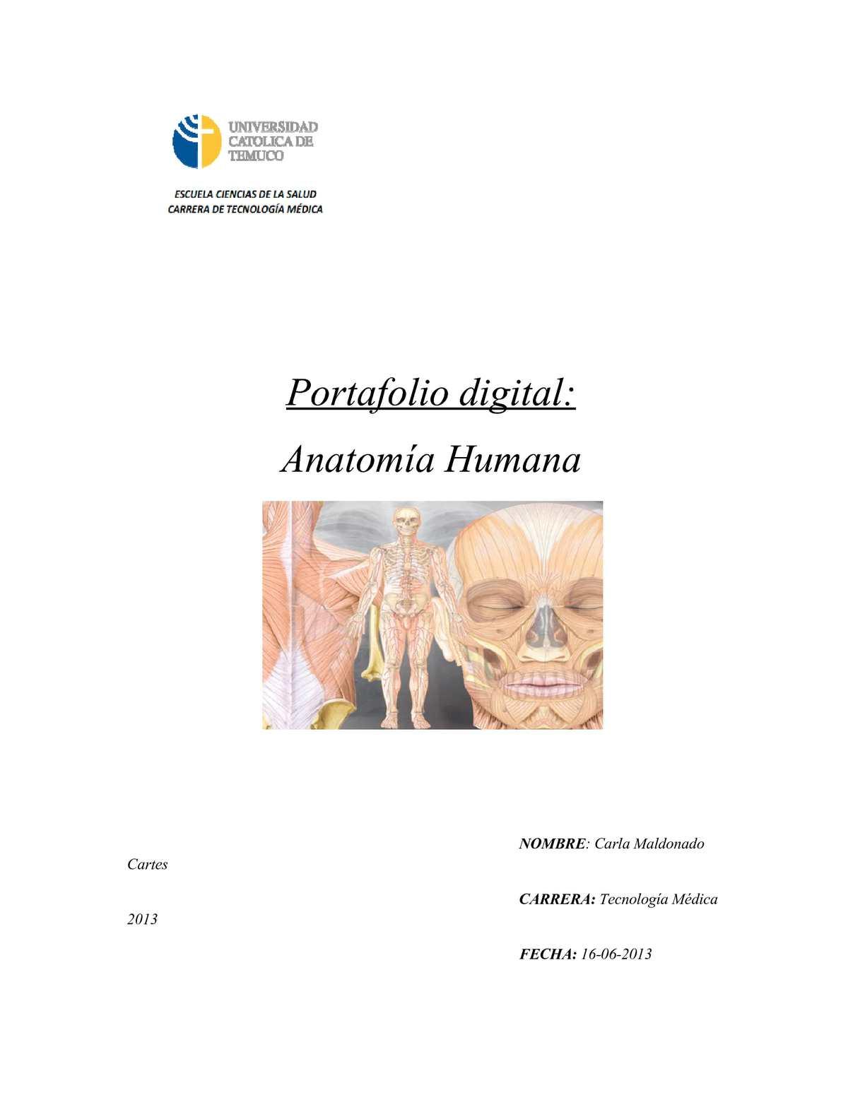Calaméo - Portafolio Digital Anatomía Humana - Carla Maldonado Cartes