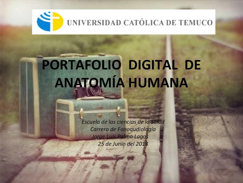 Calaméo - PORTAFOLIO DIGITAL- ANATOMIA-JORGE PALMA