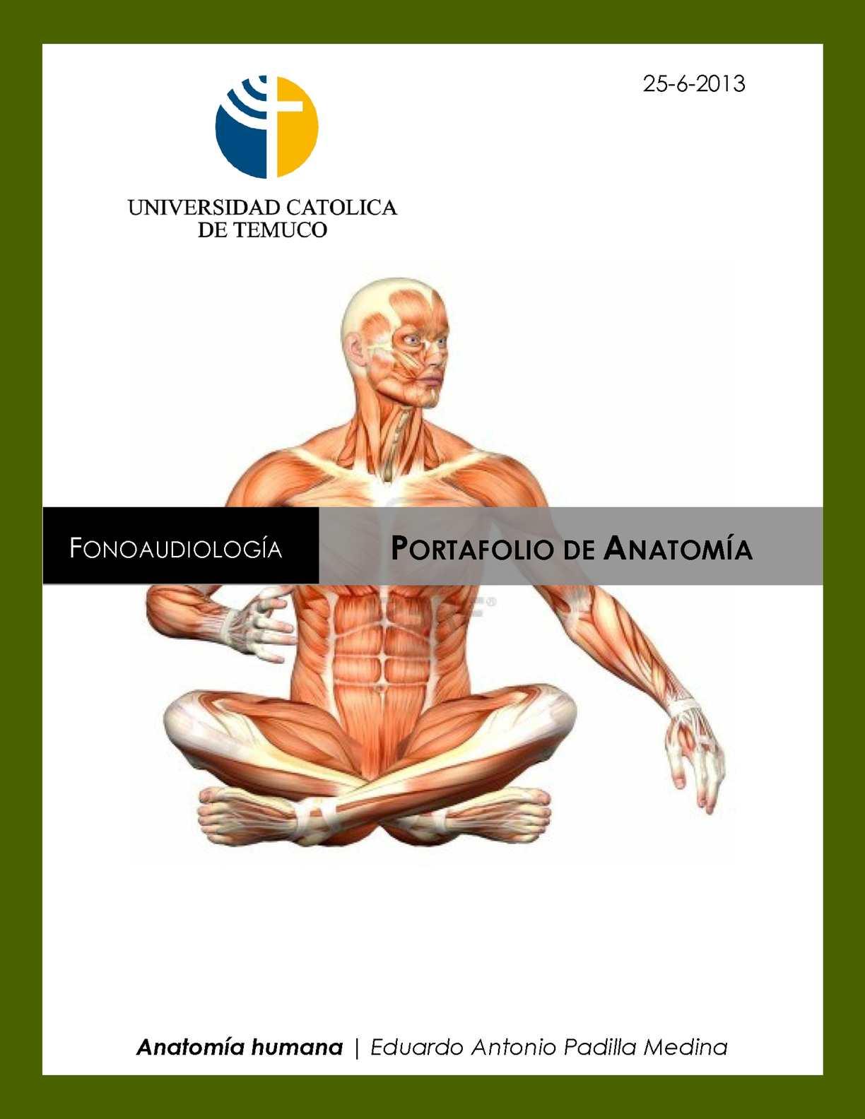 Calaméo - Portafolio de Anatomía - Eduardo Padilla Medina.