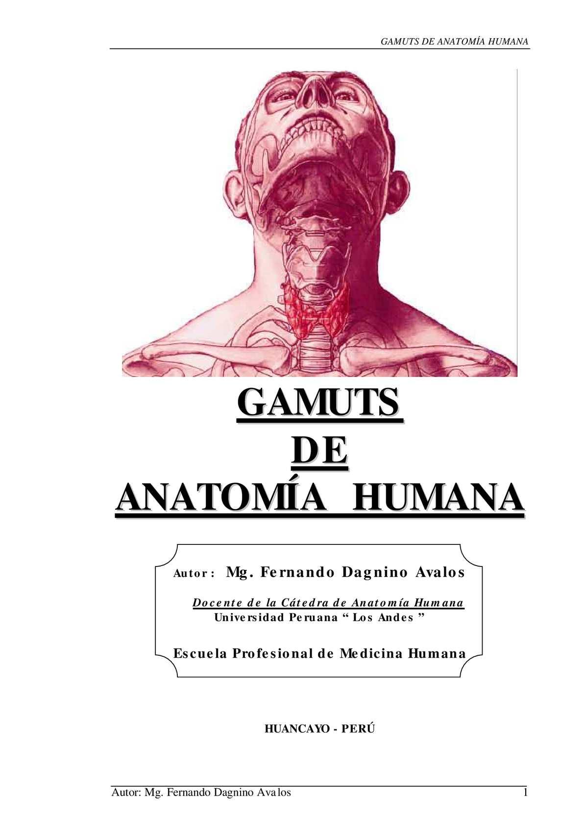 Calaméo - ANATOMIA HUMANA