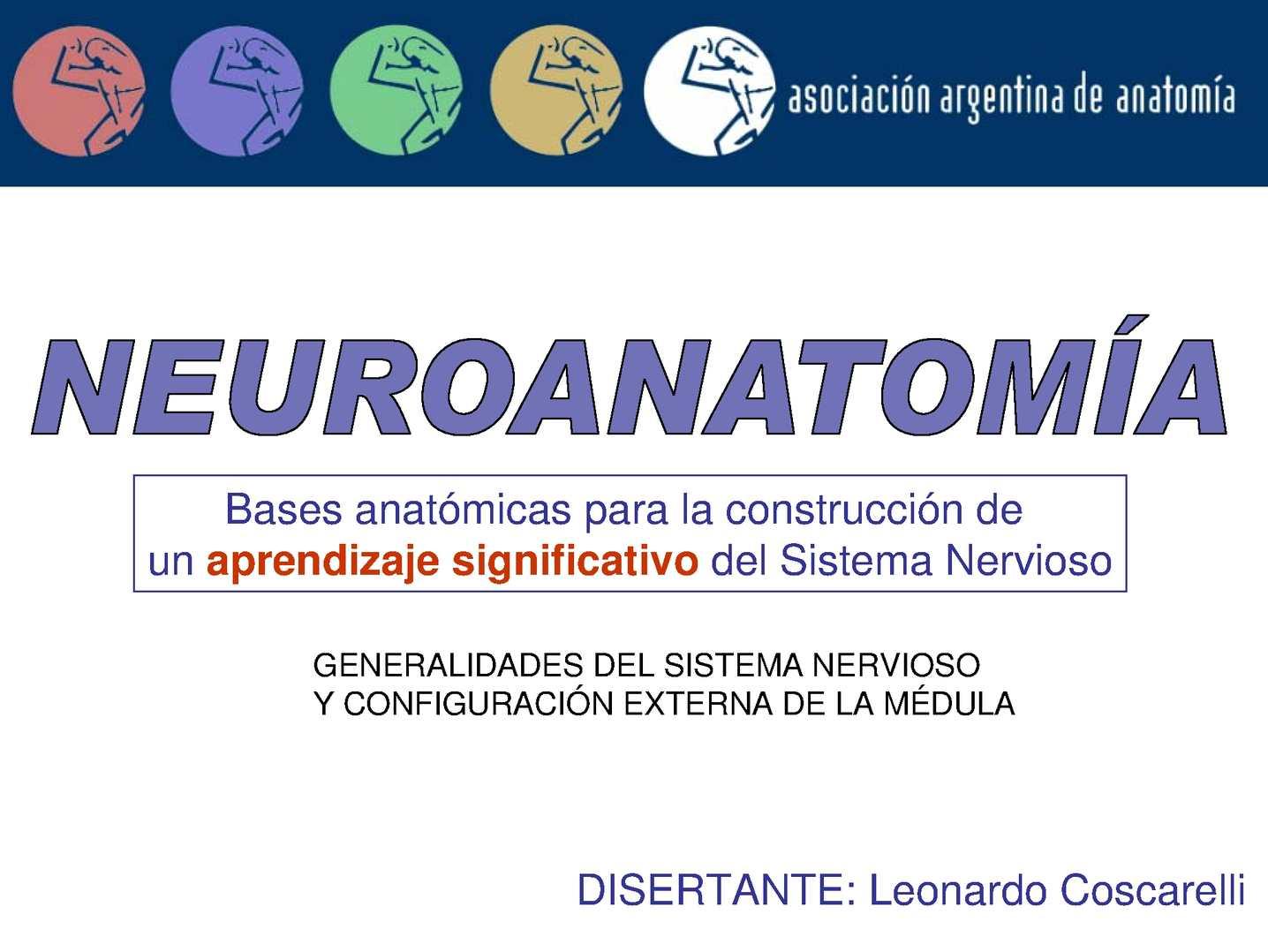 Calaméo - Neuroanatomía - Leo Coscarelli (pdf)