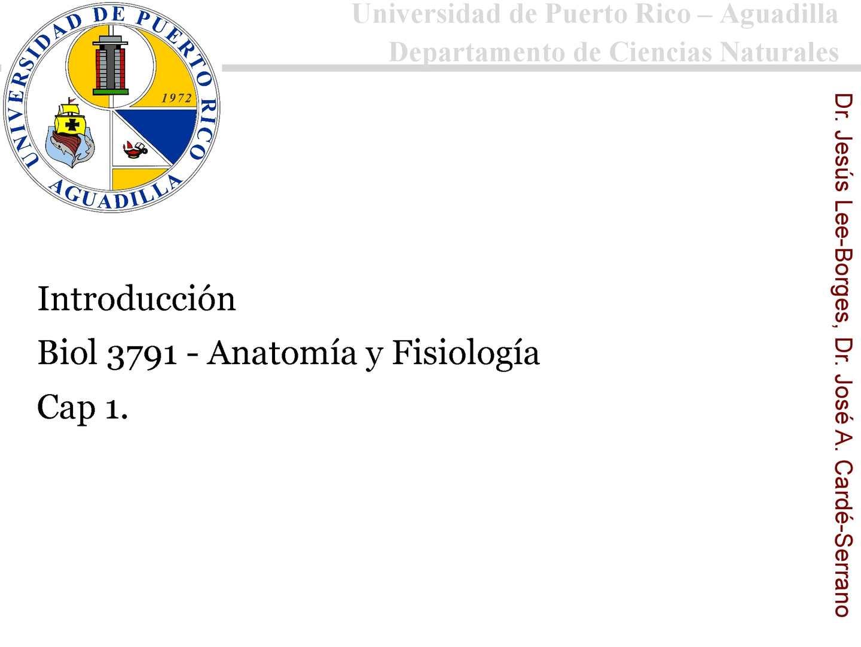 Calaméo - Presentacion Cap 1 Biol 3791-Agosto 2013