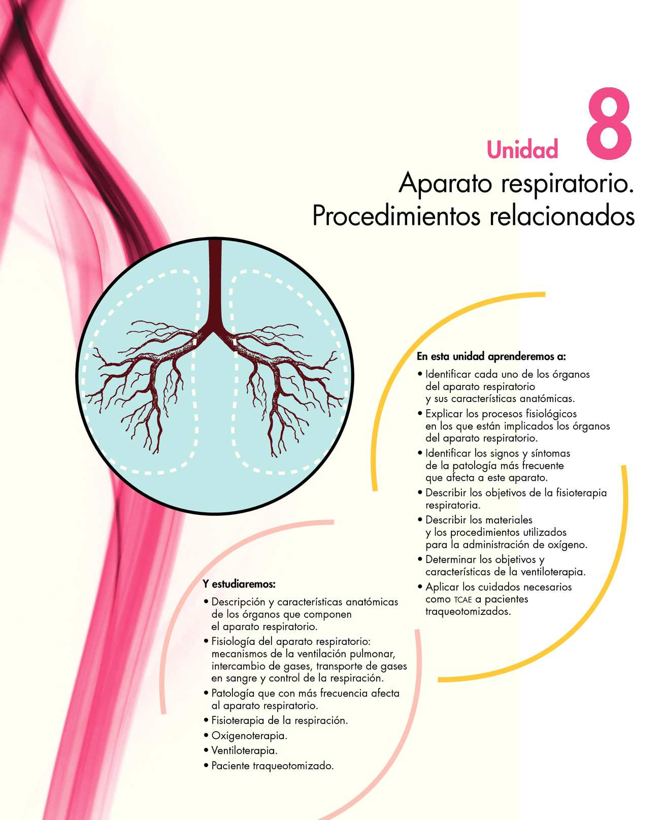 Calaméo - Anatomia del sistema respiratorio