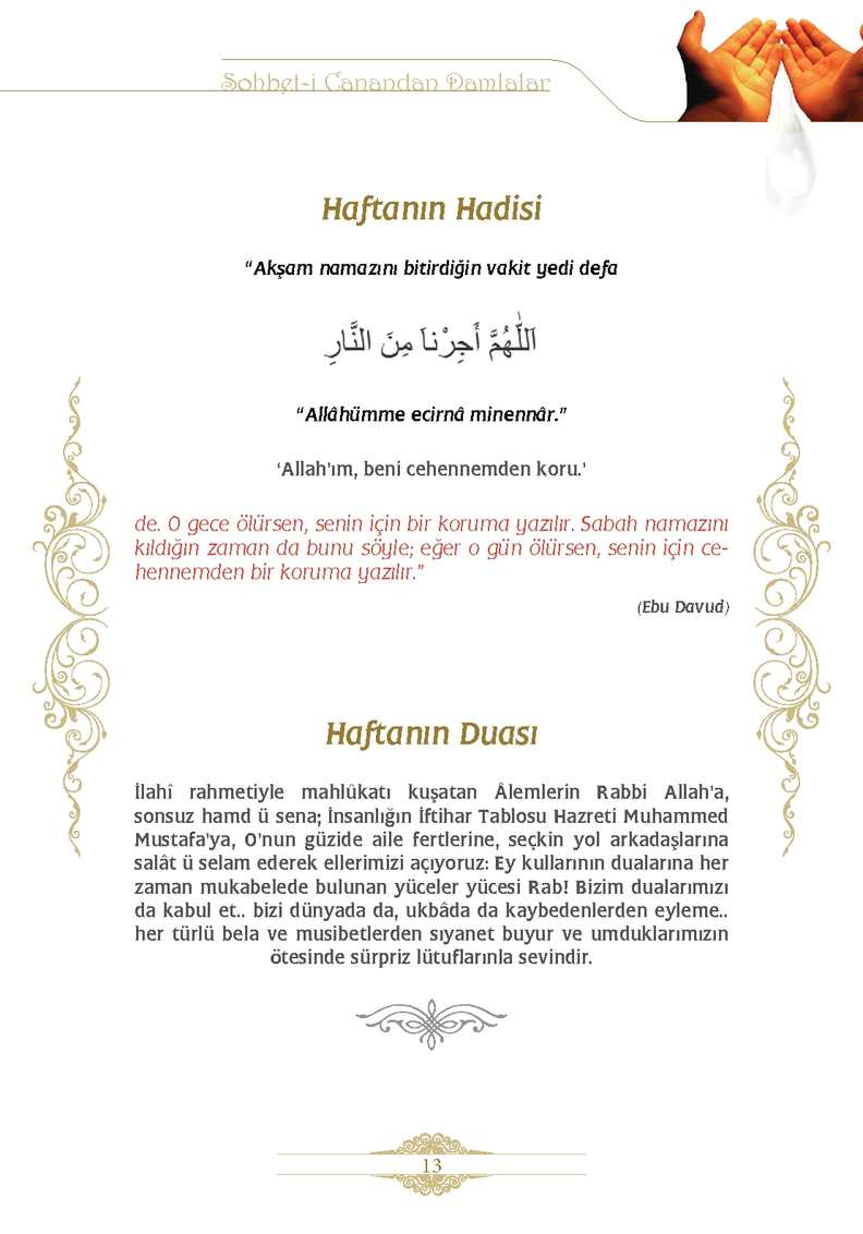 Page 13