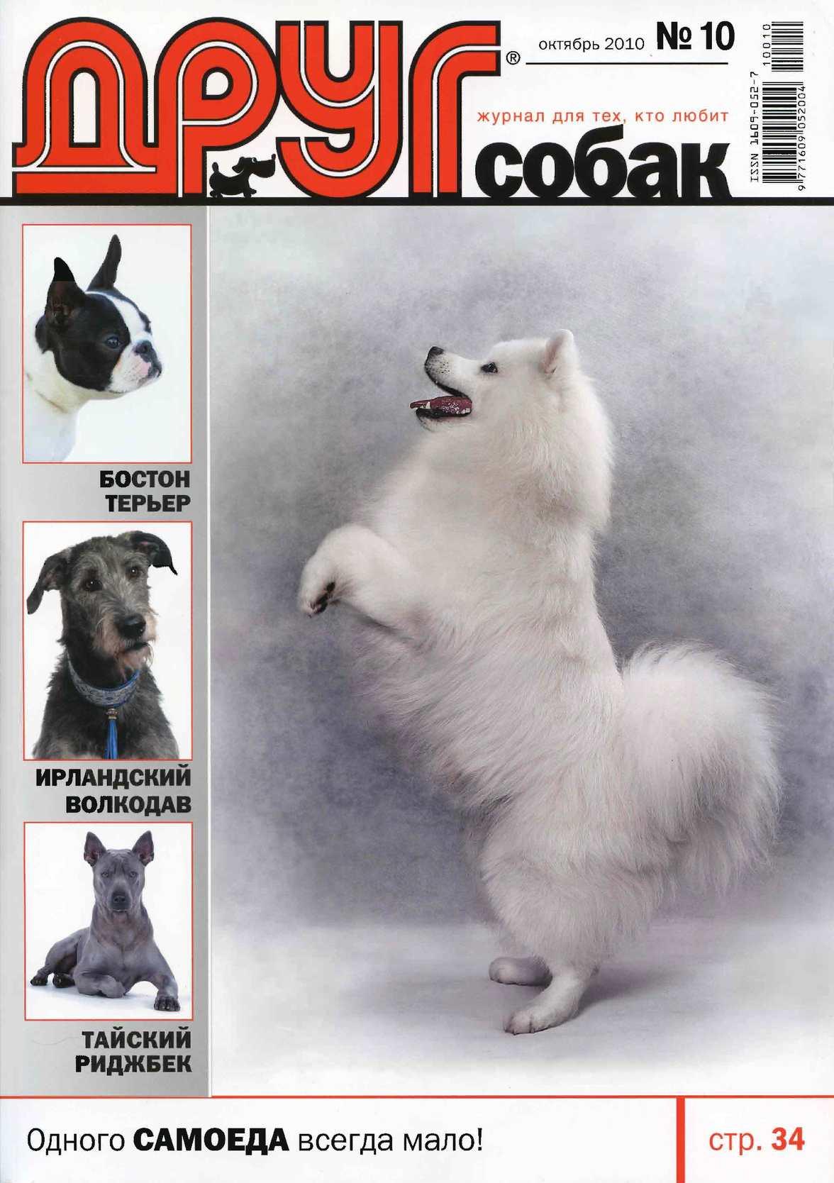 Calaméo - Друг собак 2010 - №10 7bd76abb7fe2d