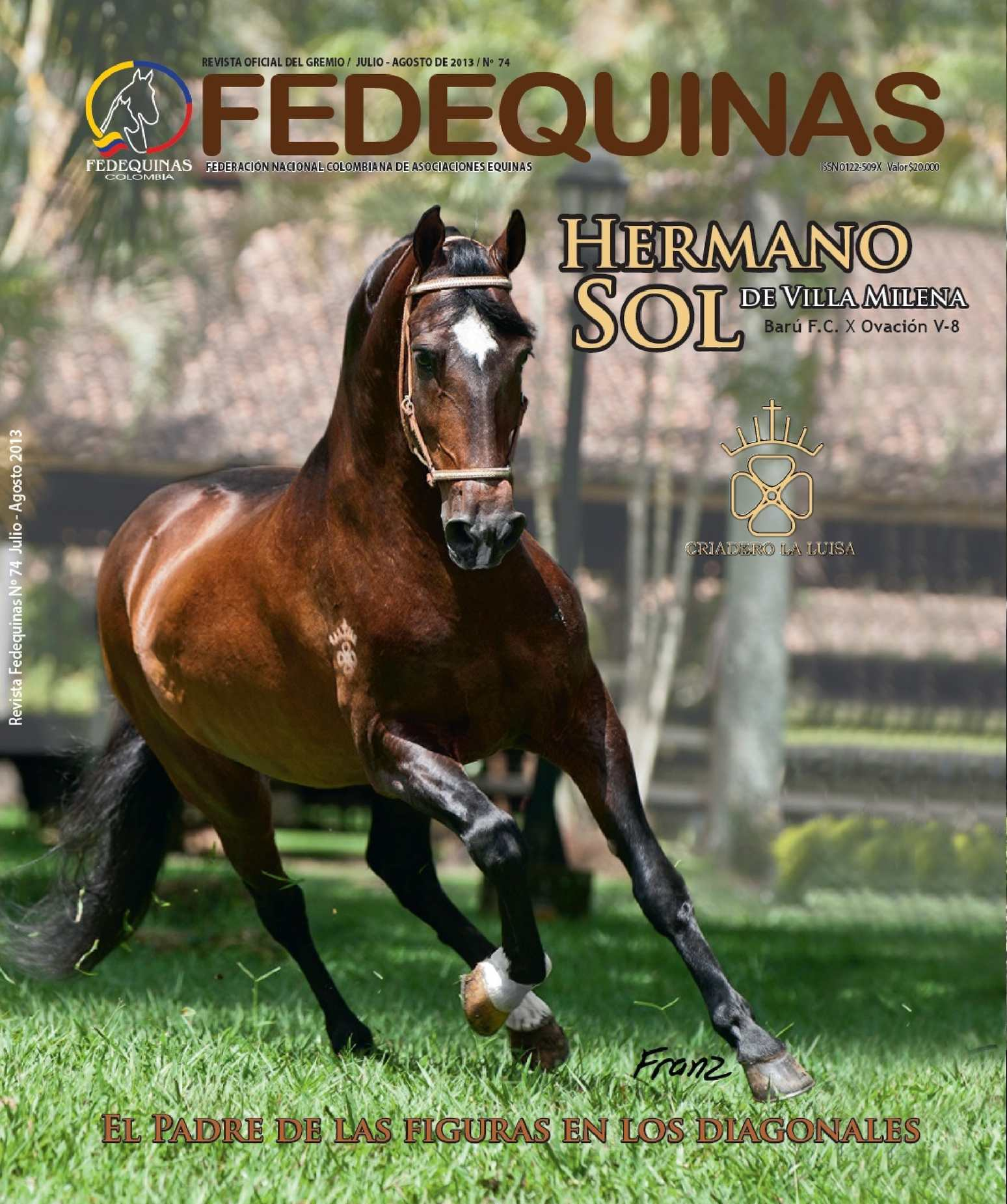 Calam o revista fedequinas n 74 for Paredes 3d cali