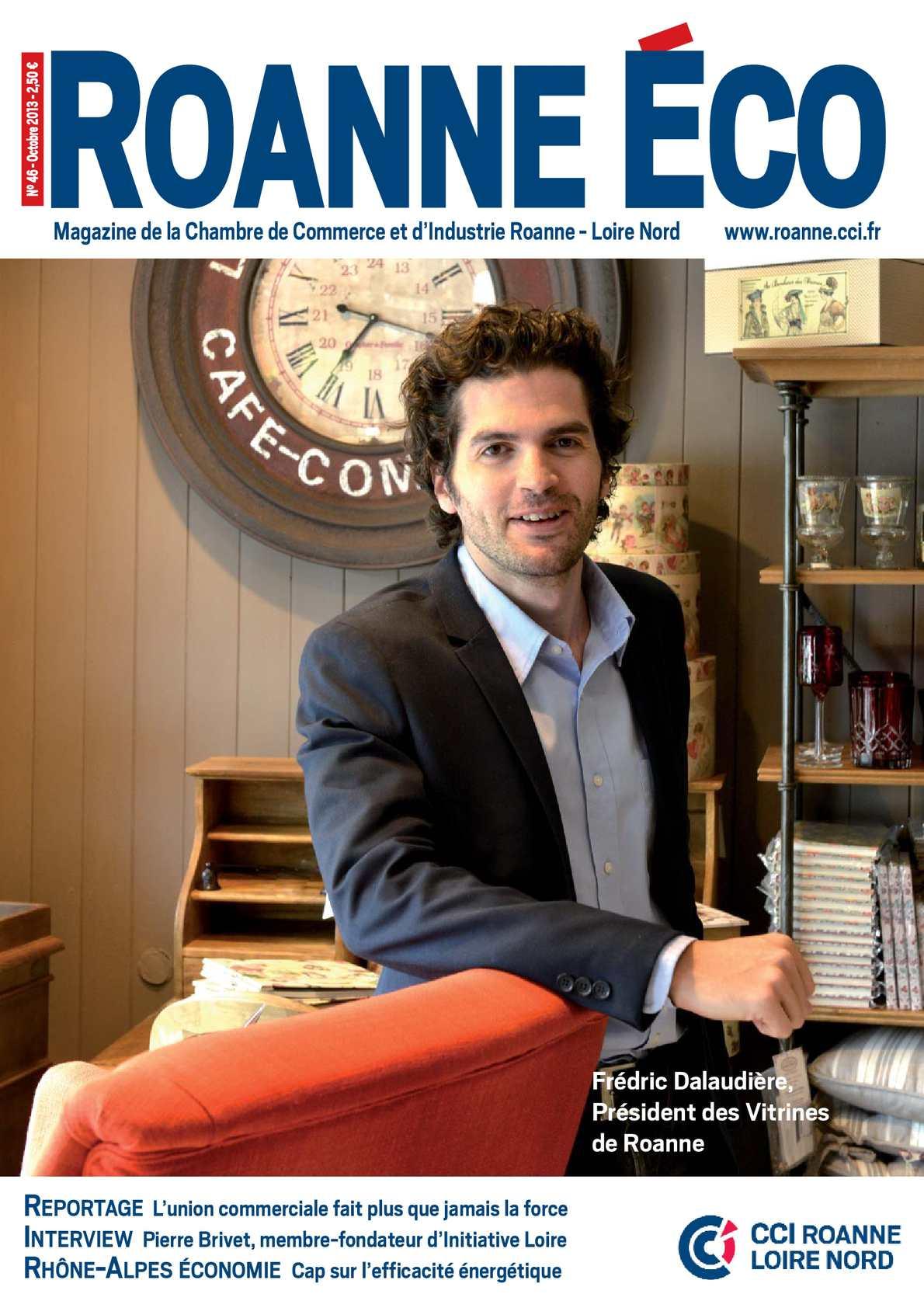 Calam o roanne eco n 46 octobre 2013 - Chambre de commerce et d industrie de l ain ...