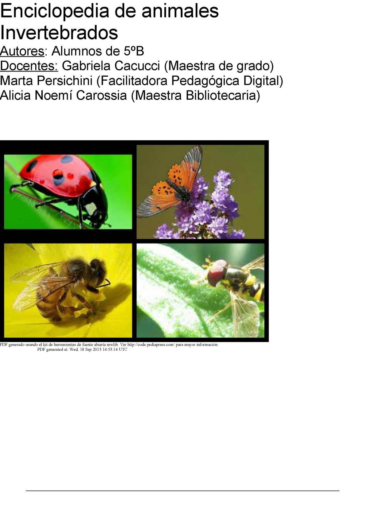 Calaméo - Enciclopedia de animales invertebrados