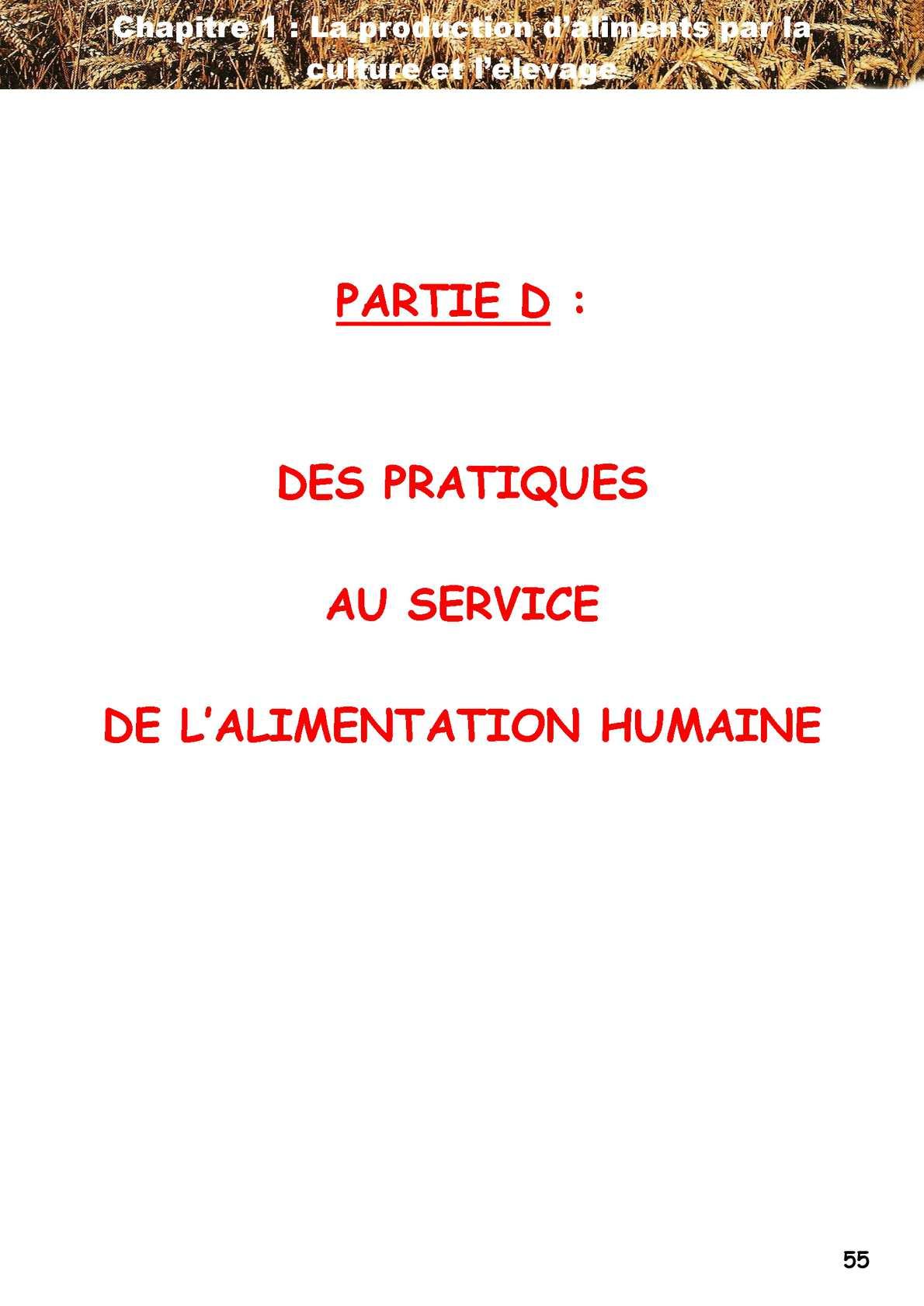 6D1_Cahier élève_Culture, élevage_13
