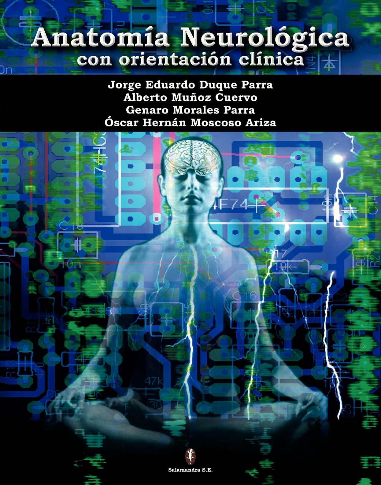 Calaméo - anatomia_neurologica_con_orientacion_clinica
