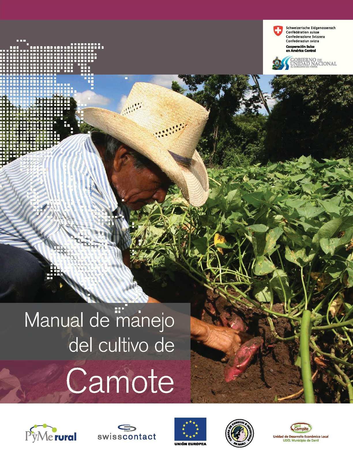 manual de cultivo de rocoto en peru