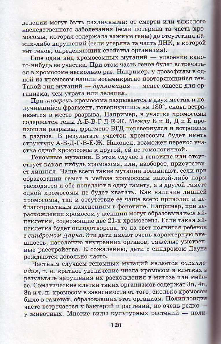 Page 120