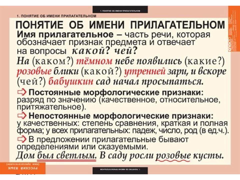 polya-razberite-predlozhenie-po-chlenam