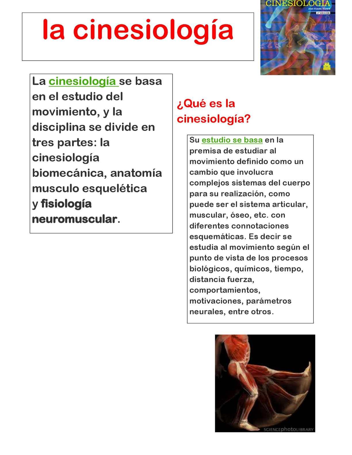 Calaméo - PERIODICO CINESIOLOGIA