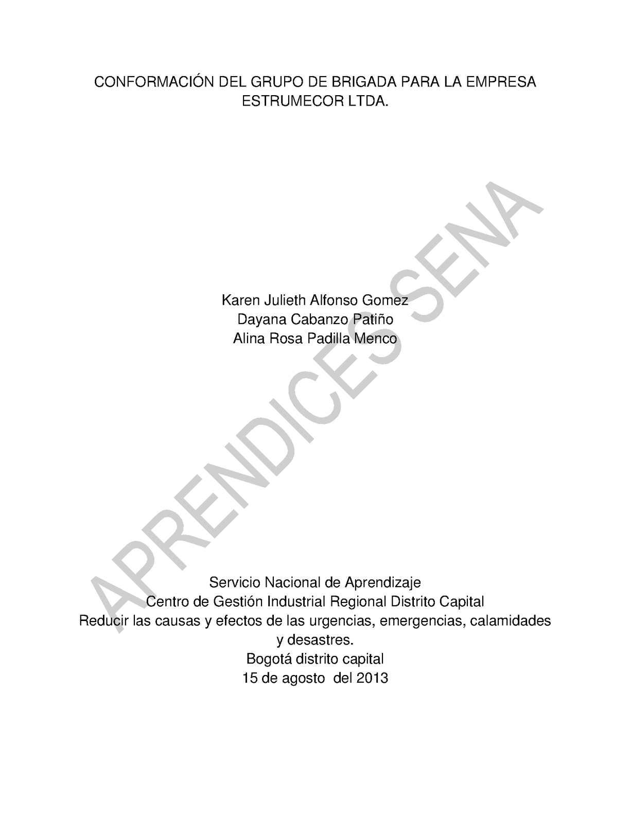informe Grupo de Brigada de emergencia de la empresa ESTRUMECOR LTDA