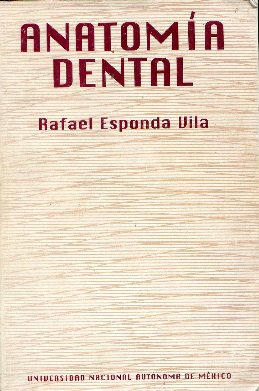 Calaméo - anatomia dental