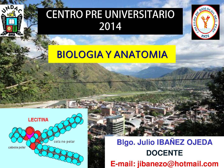 Calaméo - Biologia y Anatomia: Lipidos y Proteinas