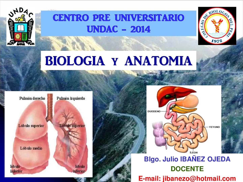 Calaméo - Biologia y Anatomia: Sistema Respiratorio y Aparato Digestivo