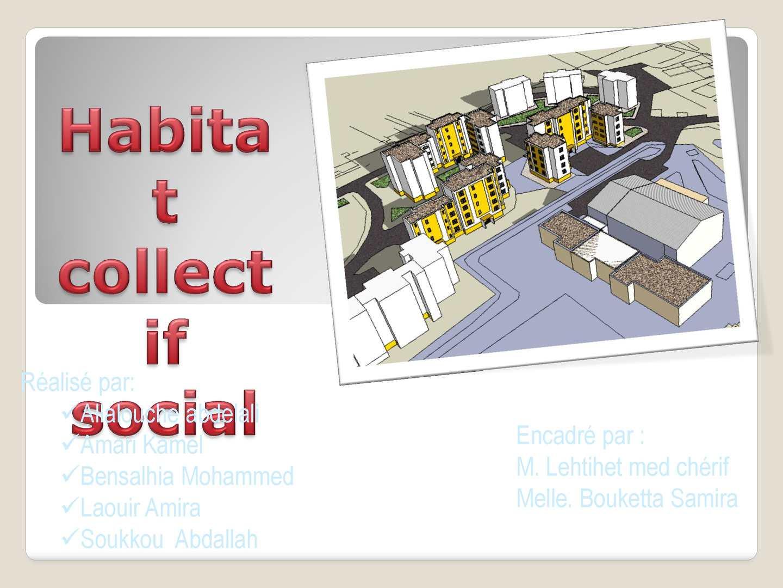Habitat  collectif social