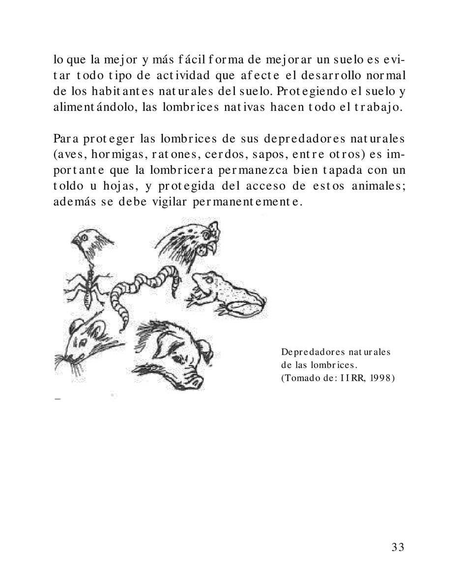 Preparación y Uso de Abonos Orgánicos - Sólidos y Líquidos - CALAMEO ...