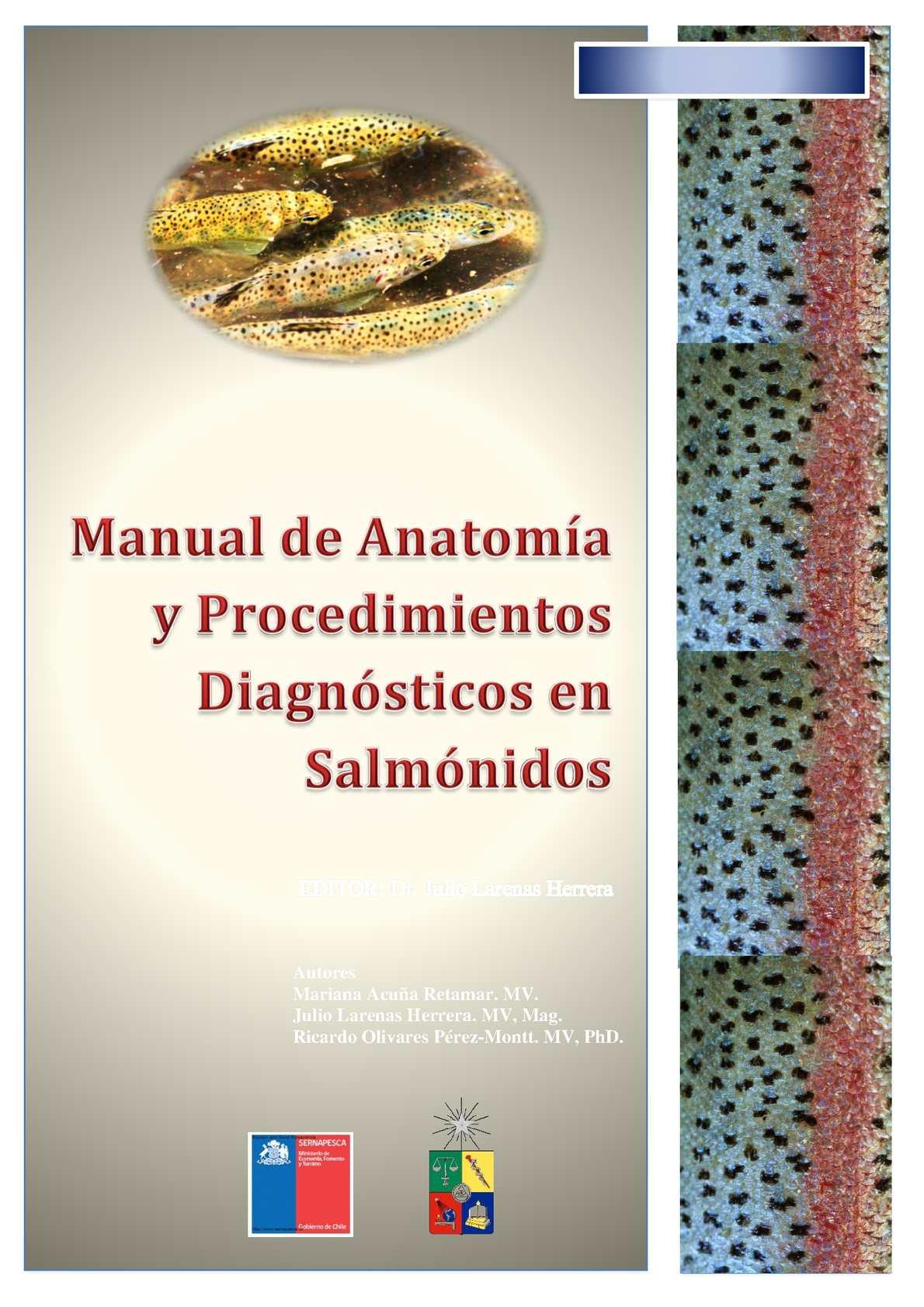 Calaméo - Manual de necropsia en salmones