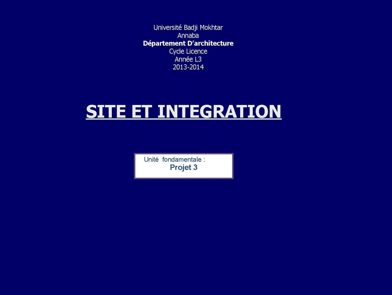 site et integration