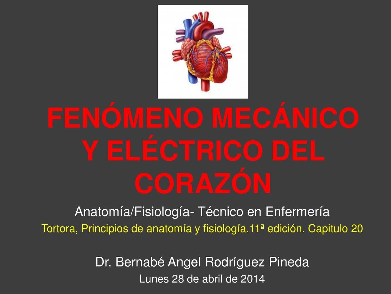 Calaméo - Fenómeno mecánico y eléctrico del corazón
