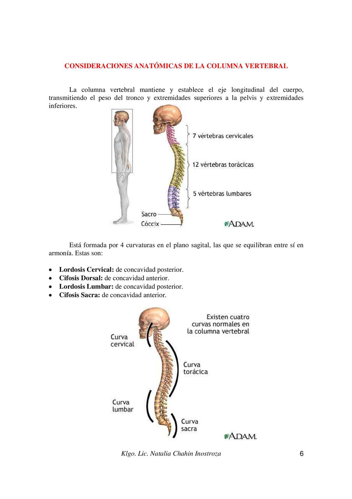 Manual de postura y alteraciones de columna vertebral - CALAMEO ...