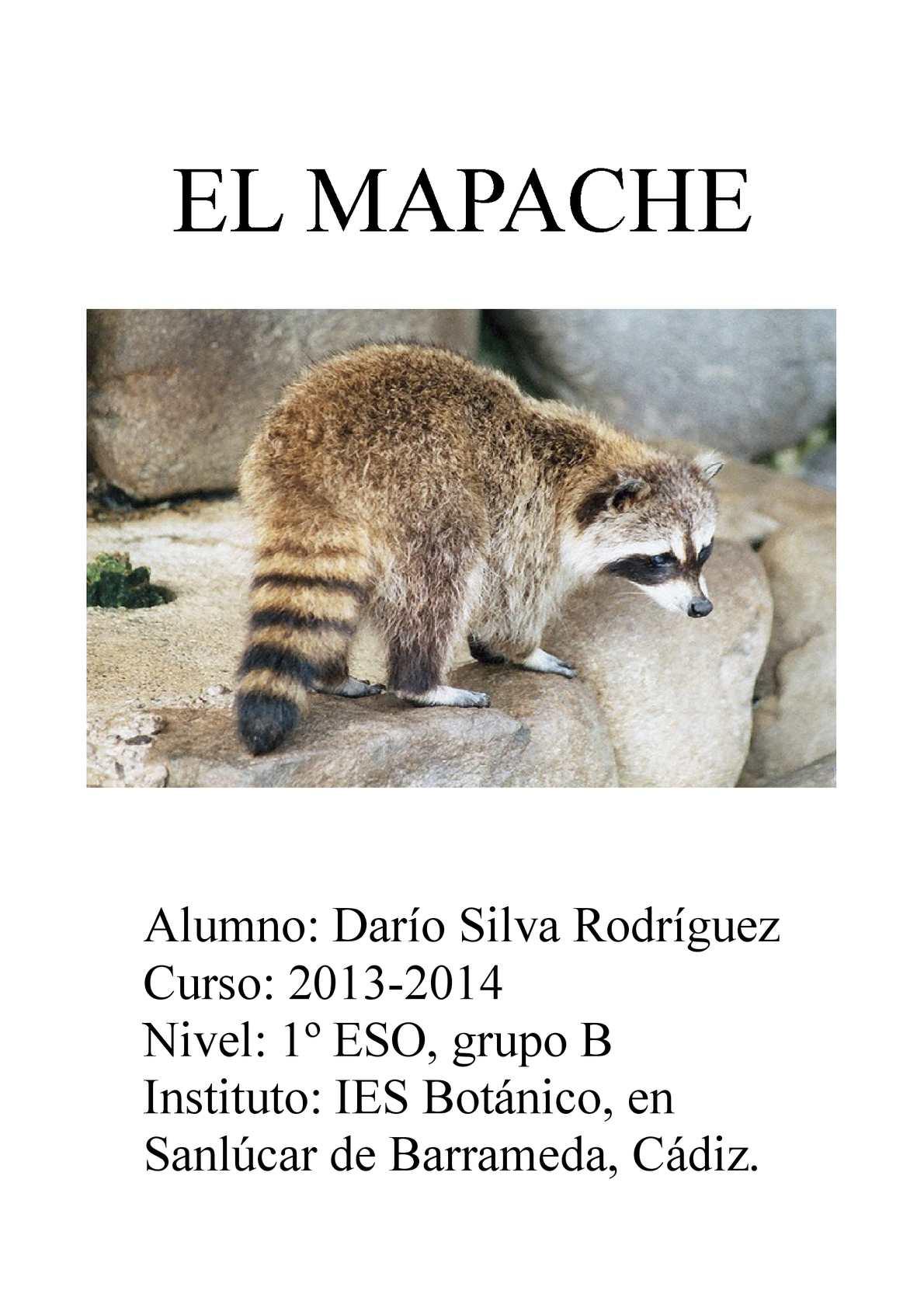 Calaméo - El mapache (Darío Silva)