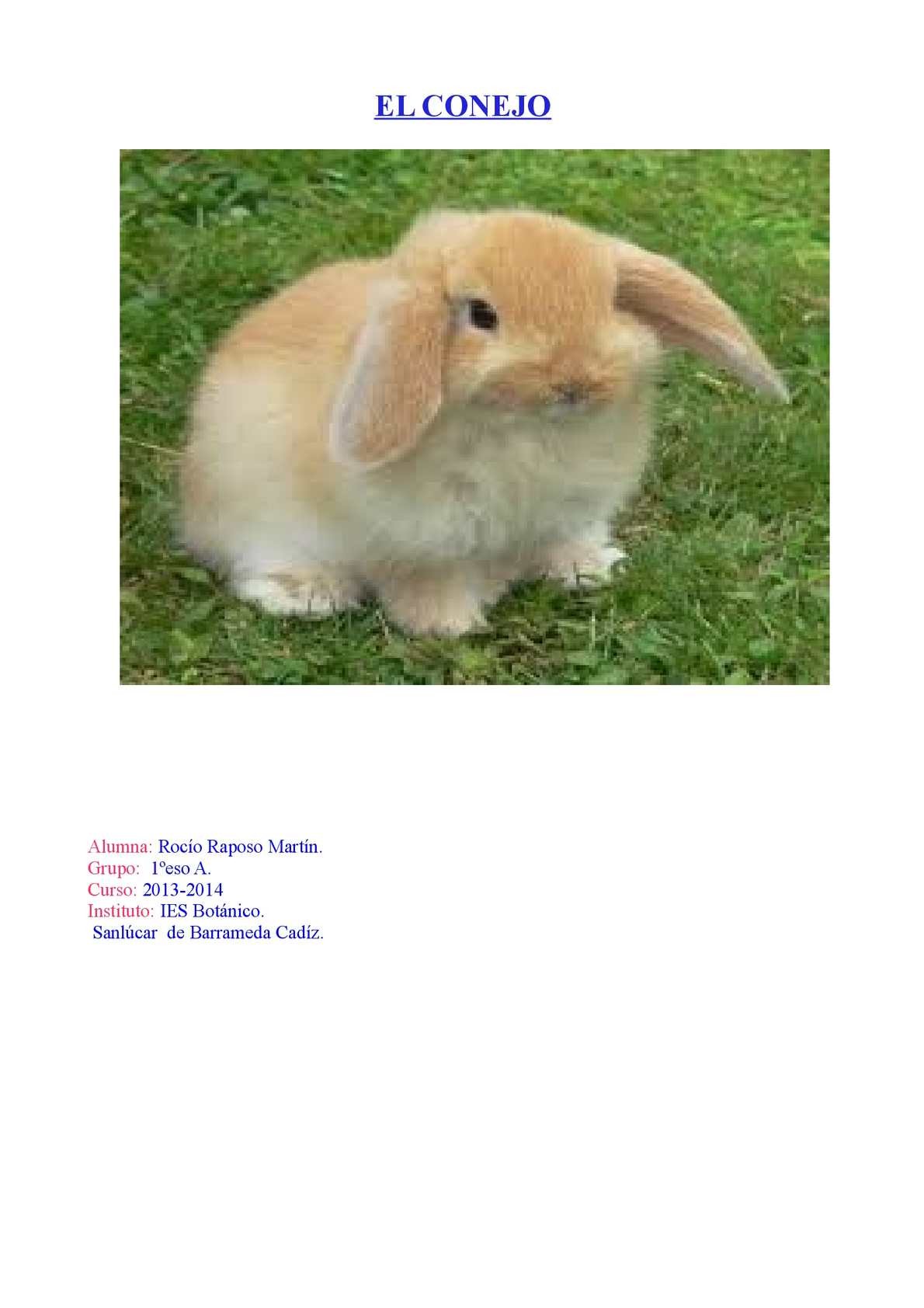 Calaméo - el conejo rocio raposo