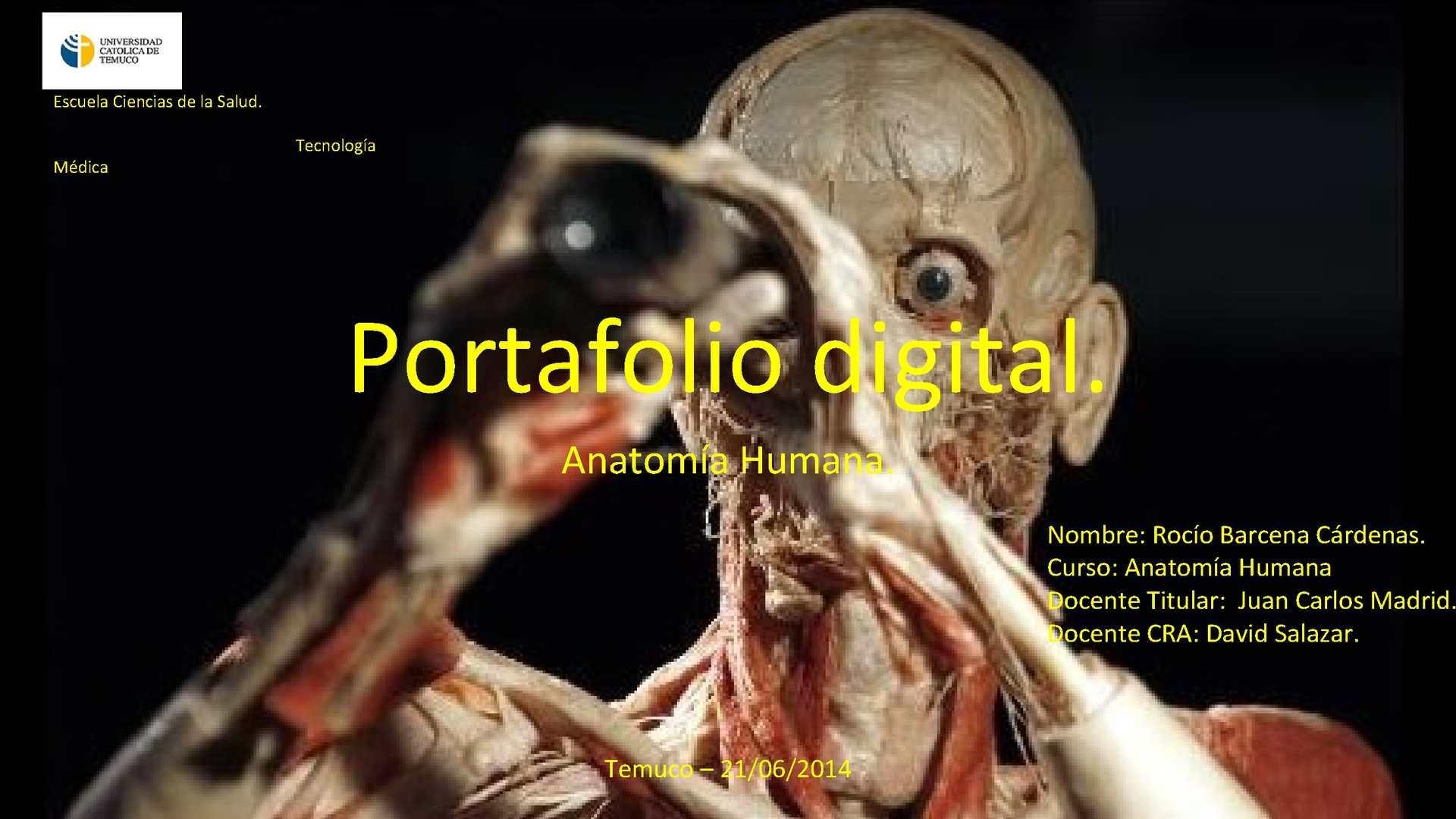 Calaméo - Portafolio digital, anatomía humana