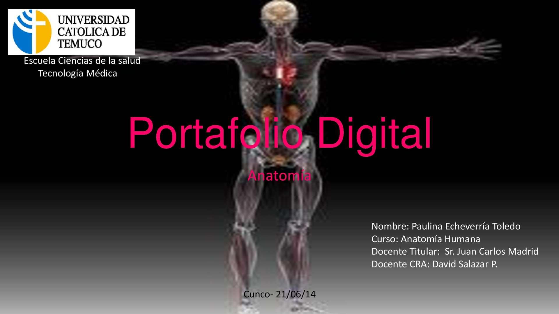 Calaméo - Portafolio digital-Anatomía-Paulina Echeverría Toledo