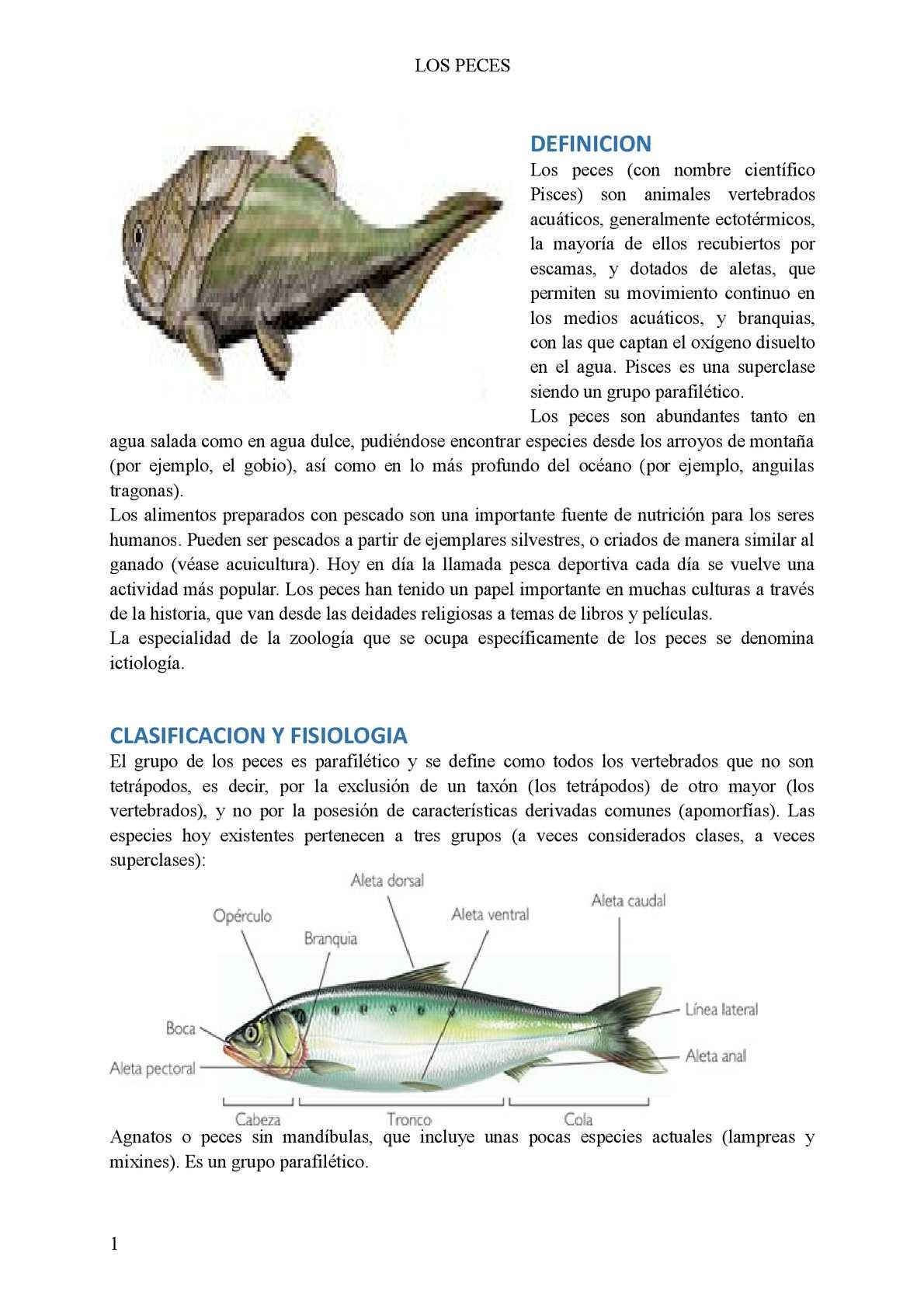 Calaméo - los peces
