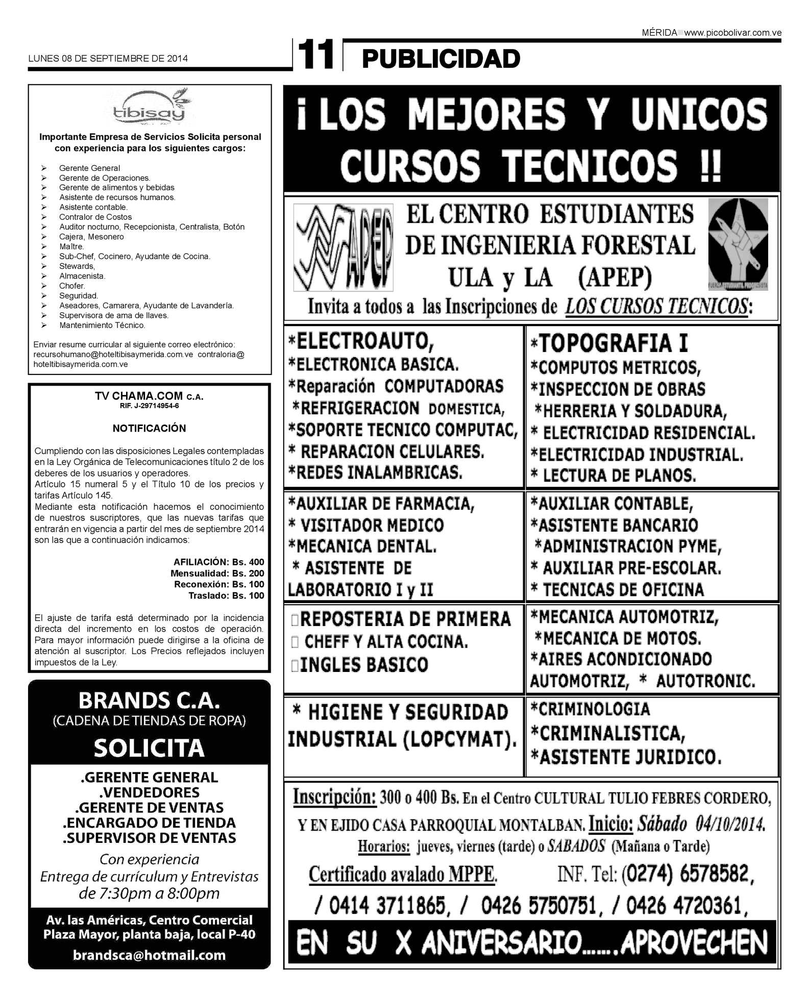 Lujo Deberes Cajero Currículum Imagen - Ejemplo De Colección De ...