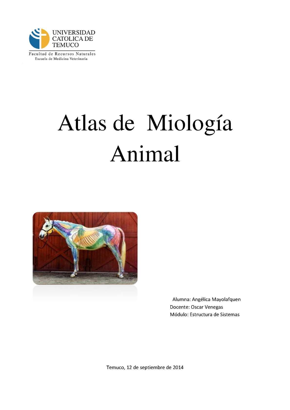 Miología Animal Estructura de Sistemas 2014