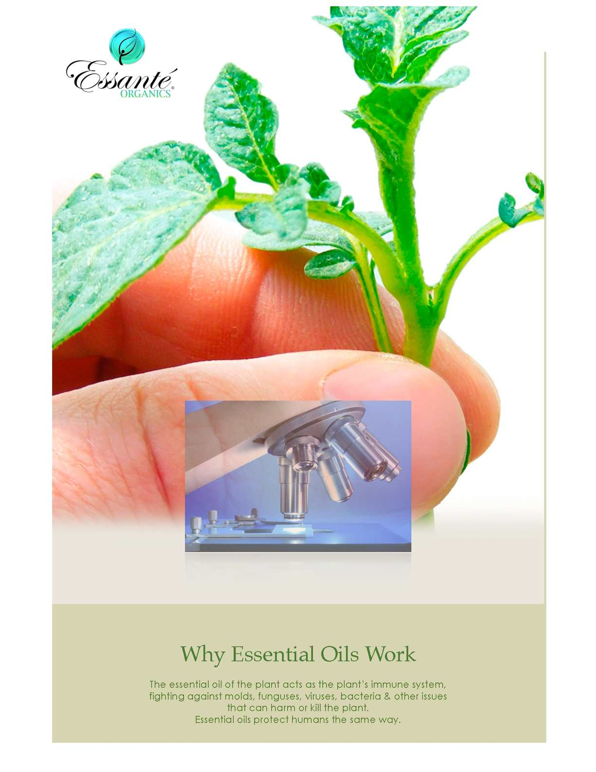 All about Essential Oils an E-Guide by G. Cosentino & Essante Organics