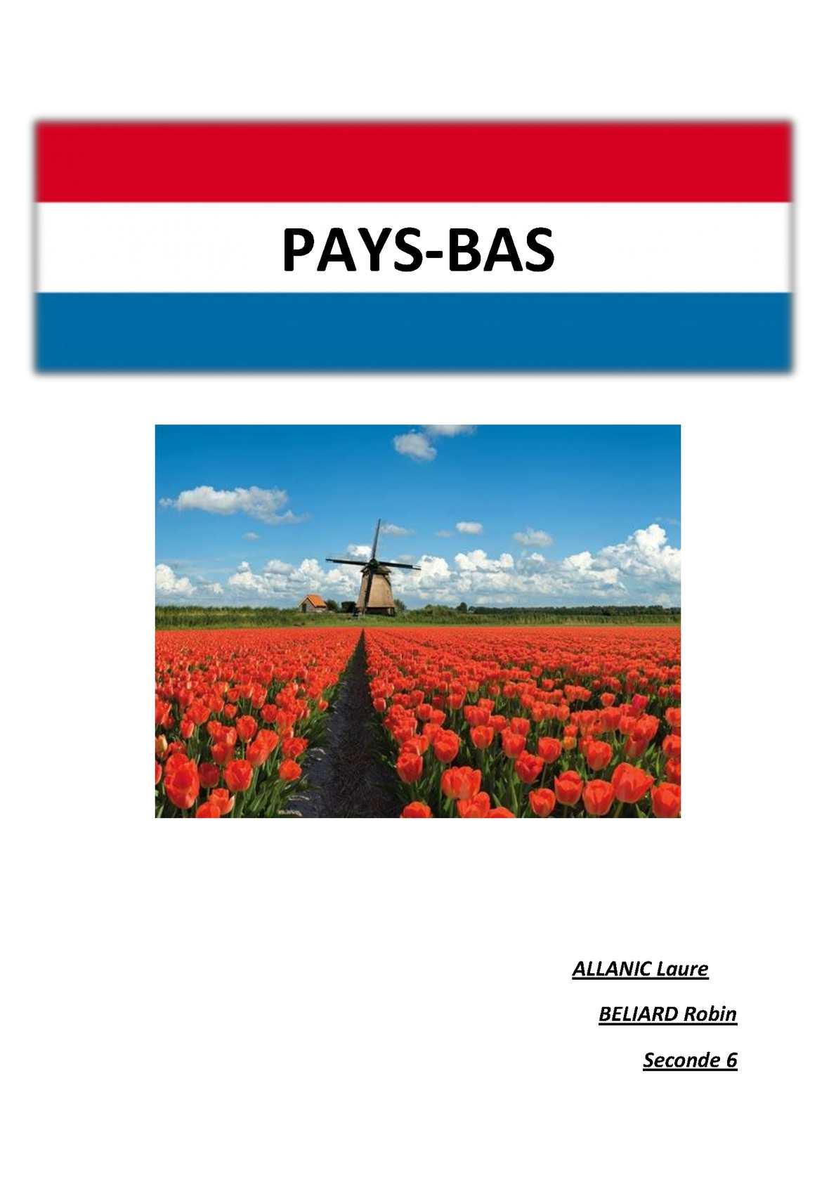 PAYS BAS Politique, justice