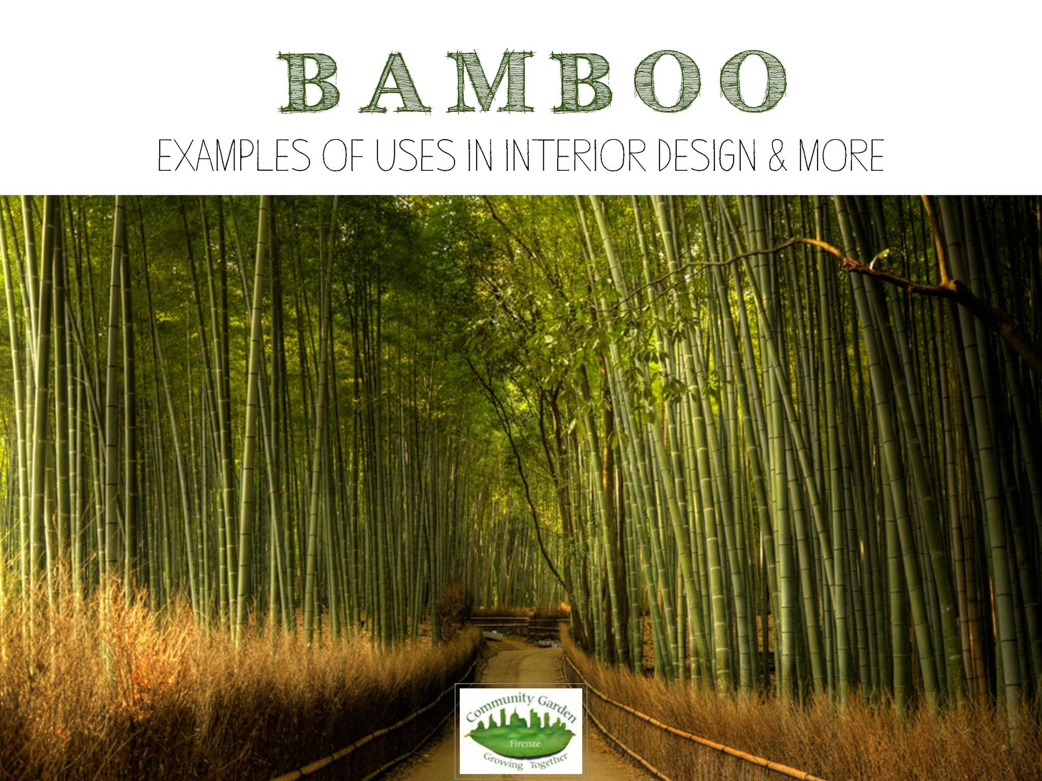 Bamboo - uses in architecture and design