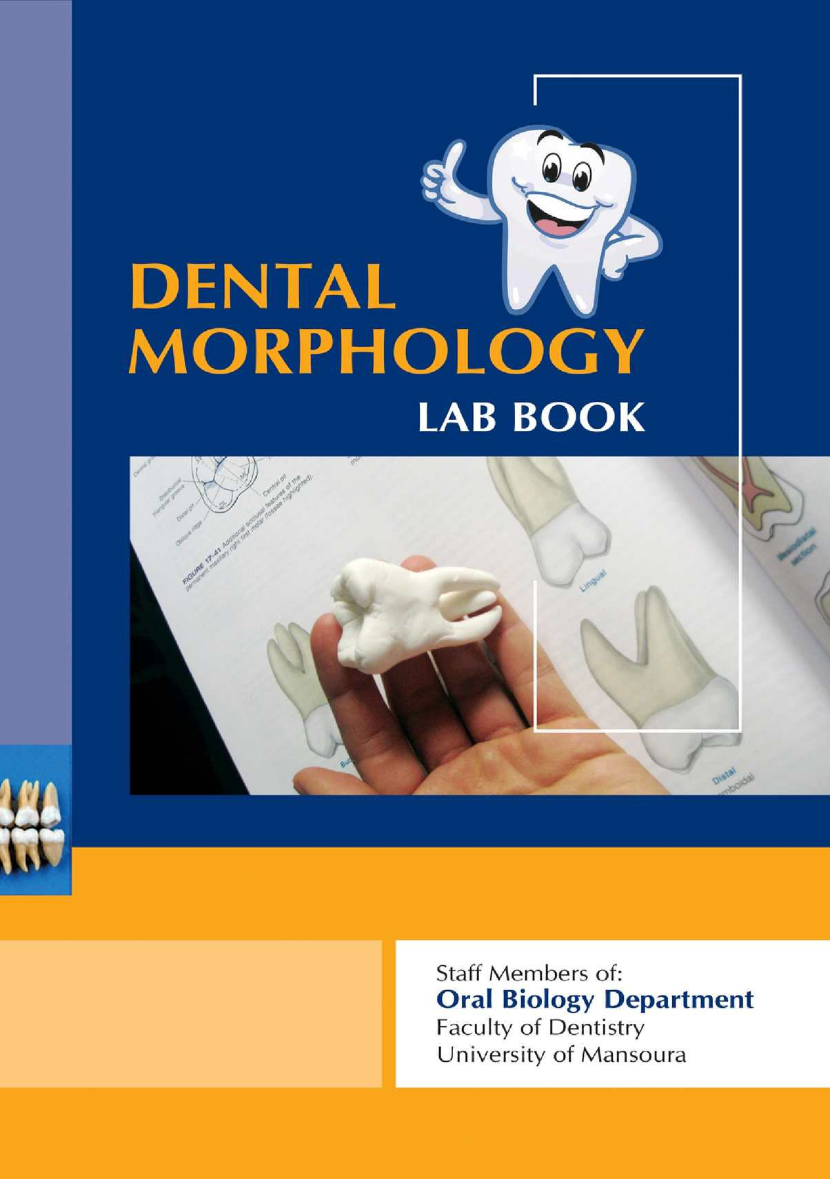 dental book Esthetic & restorative dentistry this book or any part thereof may not be reproduced  dental--atlases 2 dental implantation--atlases 3 dental.