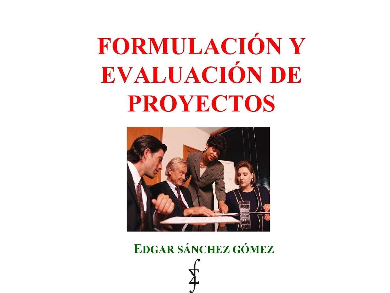Formulacion Y Evaluacin De Proyectos 1227594514588913 8