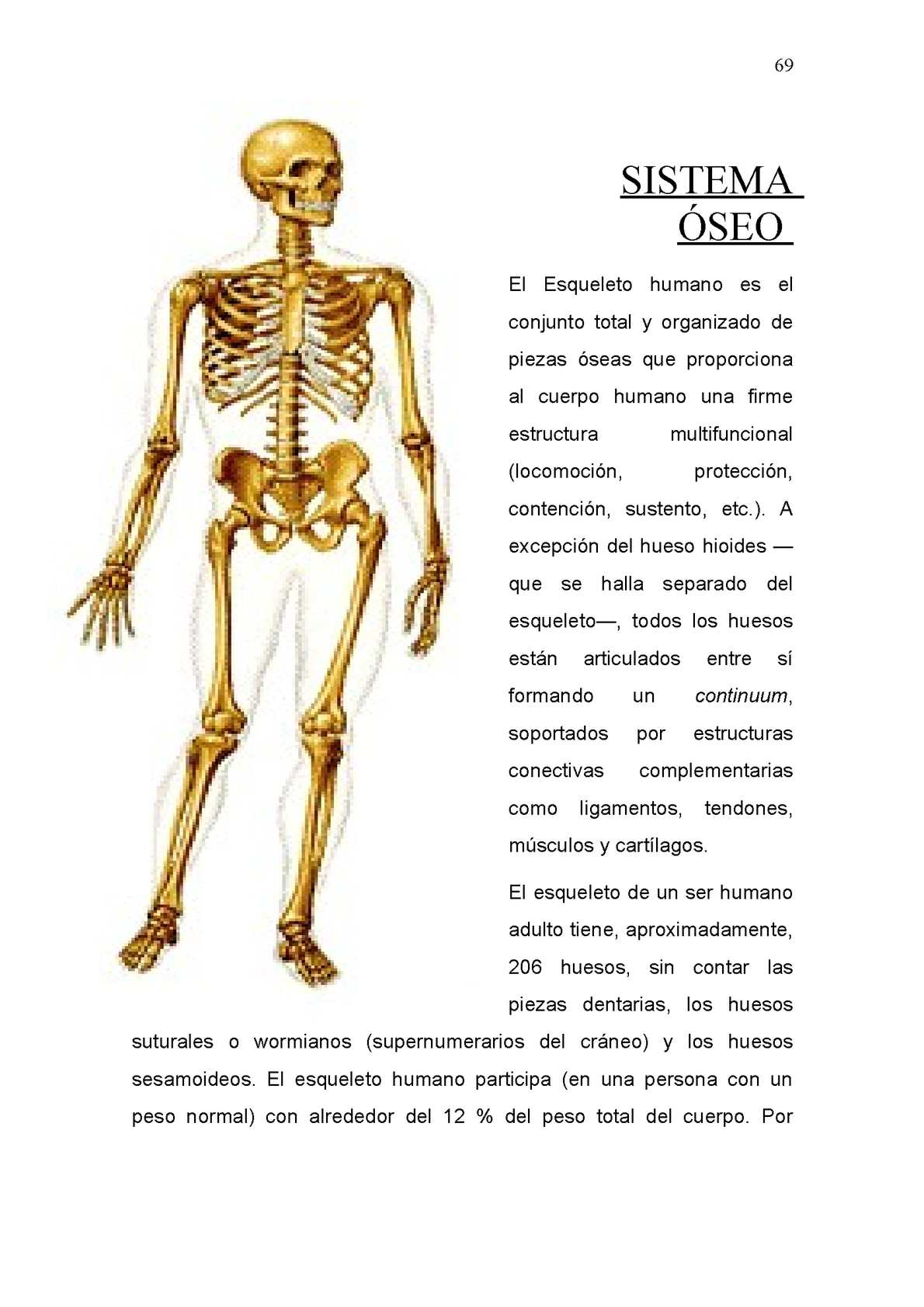 Album Sistemas Del Cuerpo Humano - CALAMEO Downloader