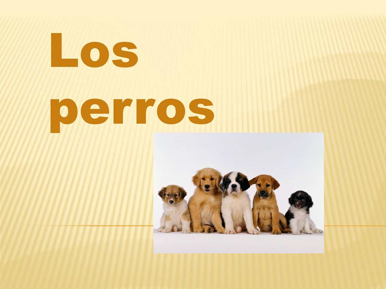 calaméo presentacion power point los perros