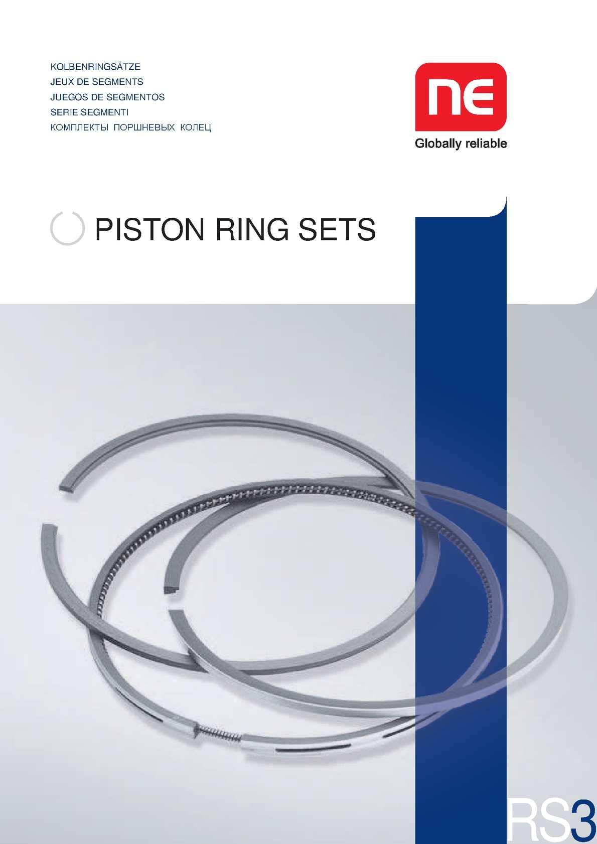 Briggs Stratton  Ring Set
