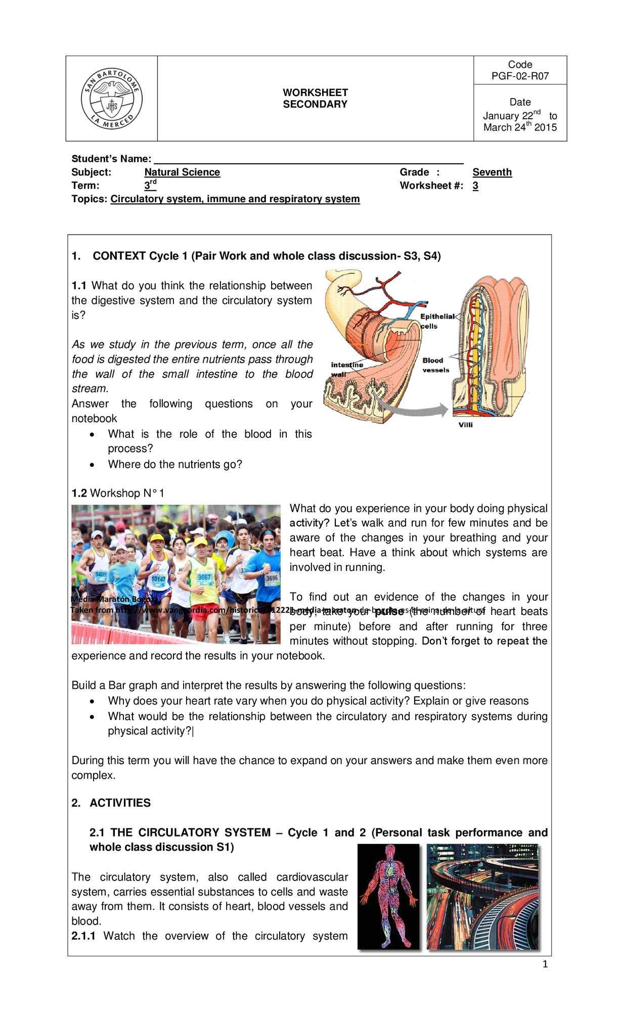 Calaméo - Third Term Worksheet 1
