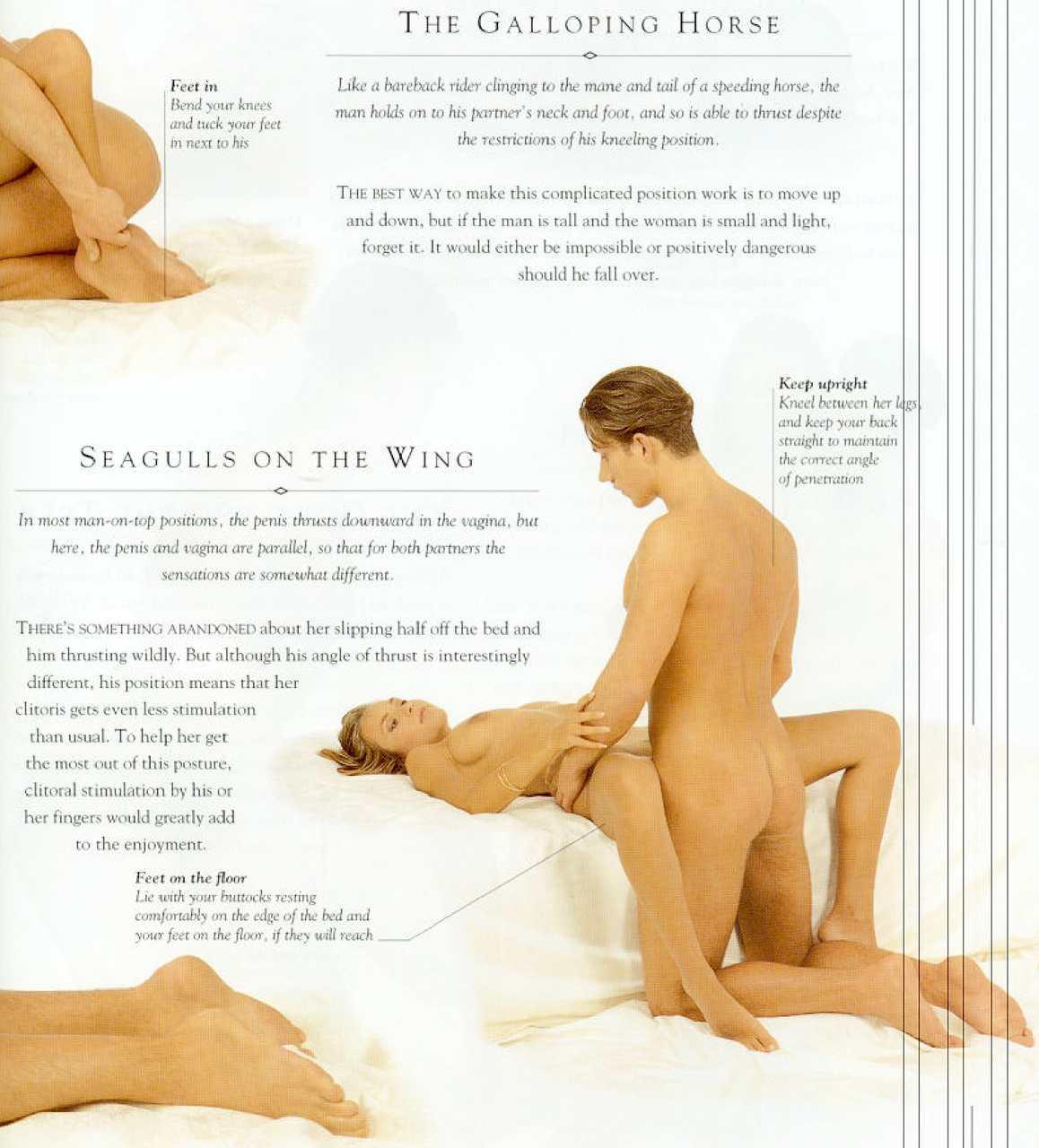 Сколько поз в сексе