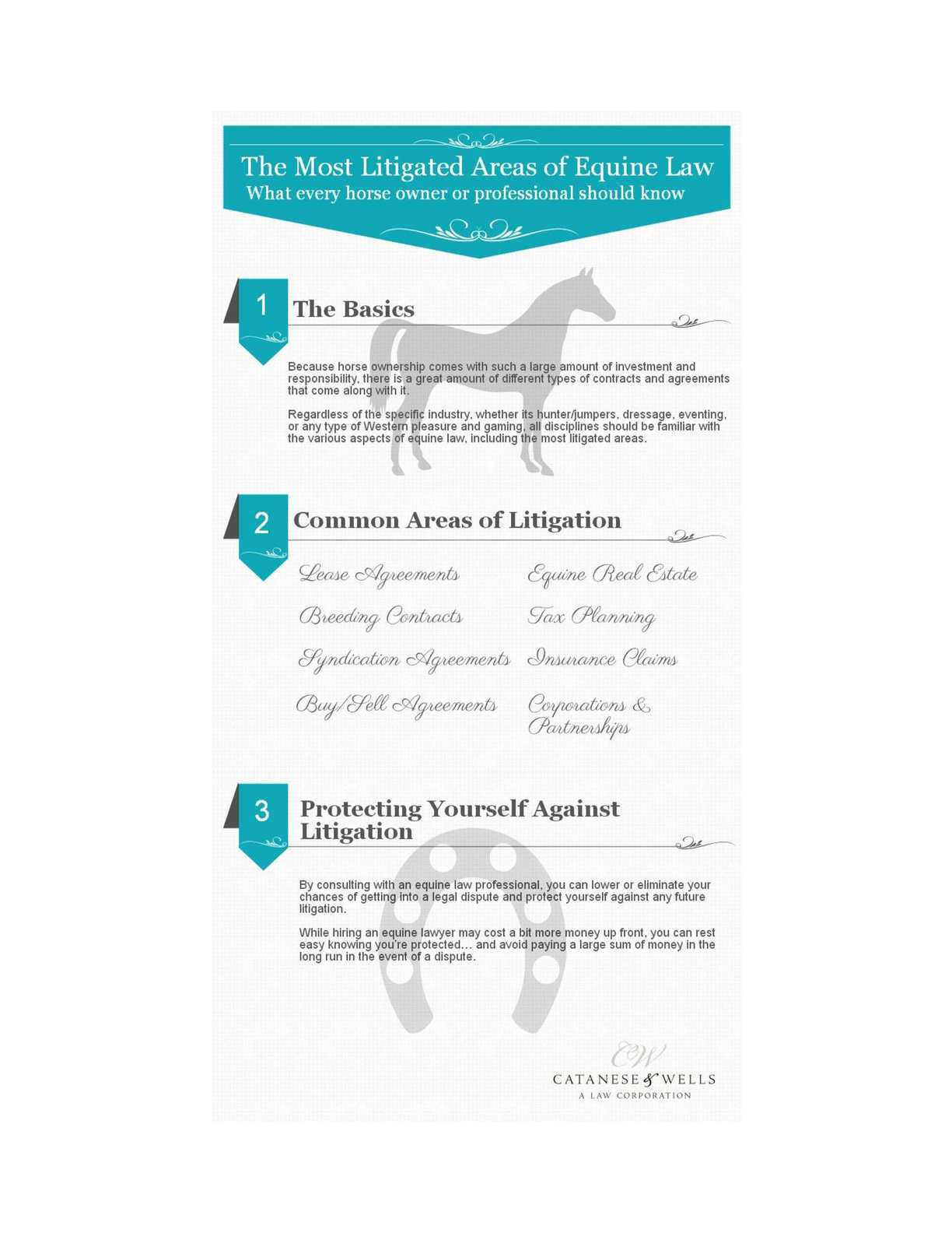 The Most Litigated Areas Of Equine Law