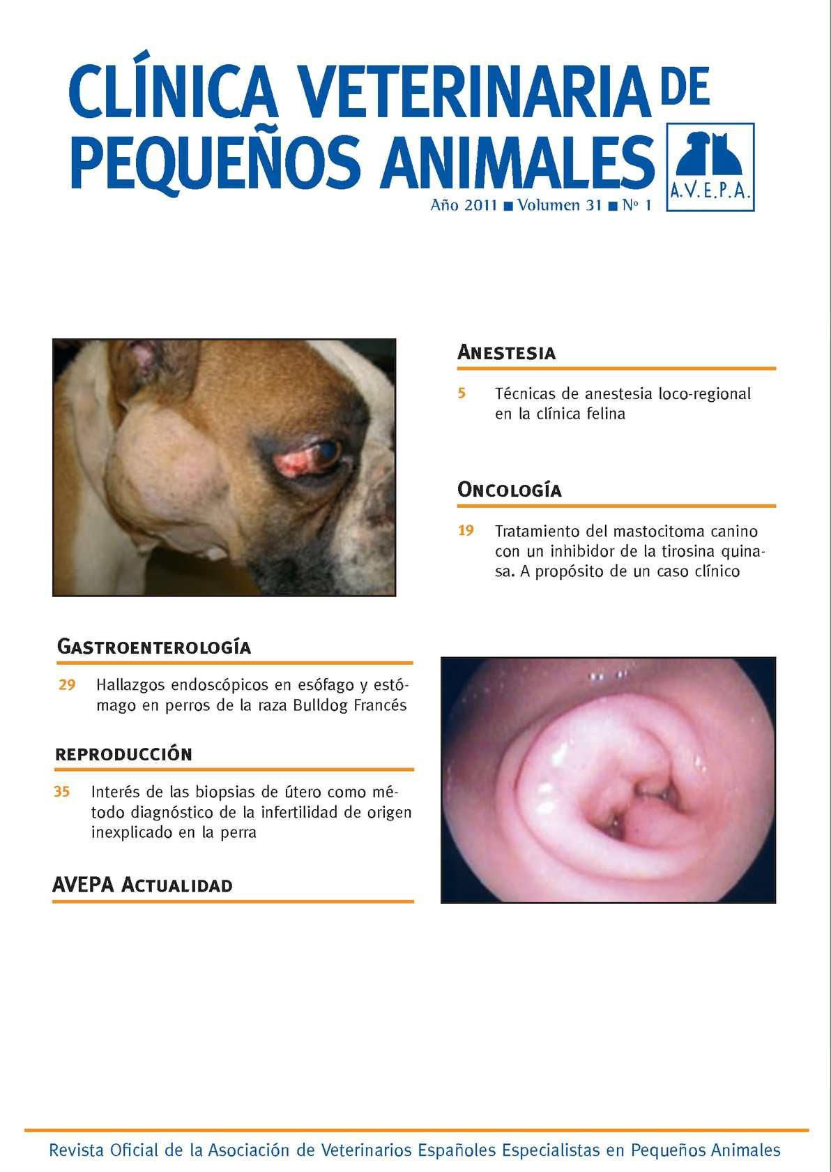 Calaméo - Clinica veterinaria de pequeños animales