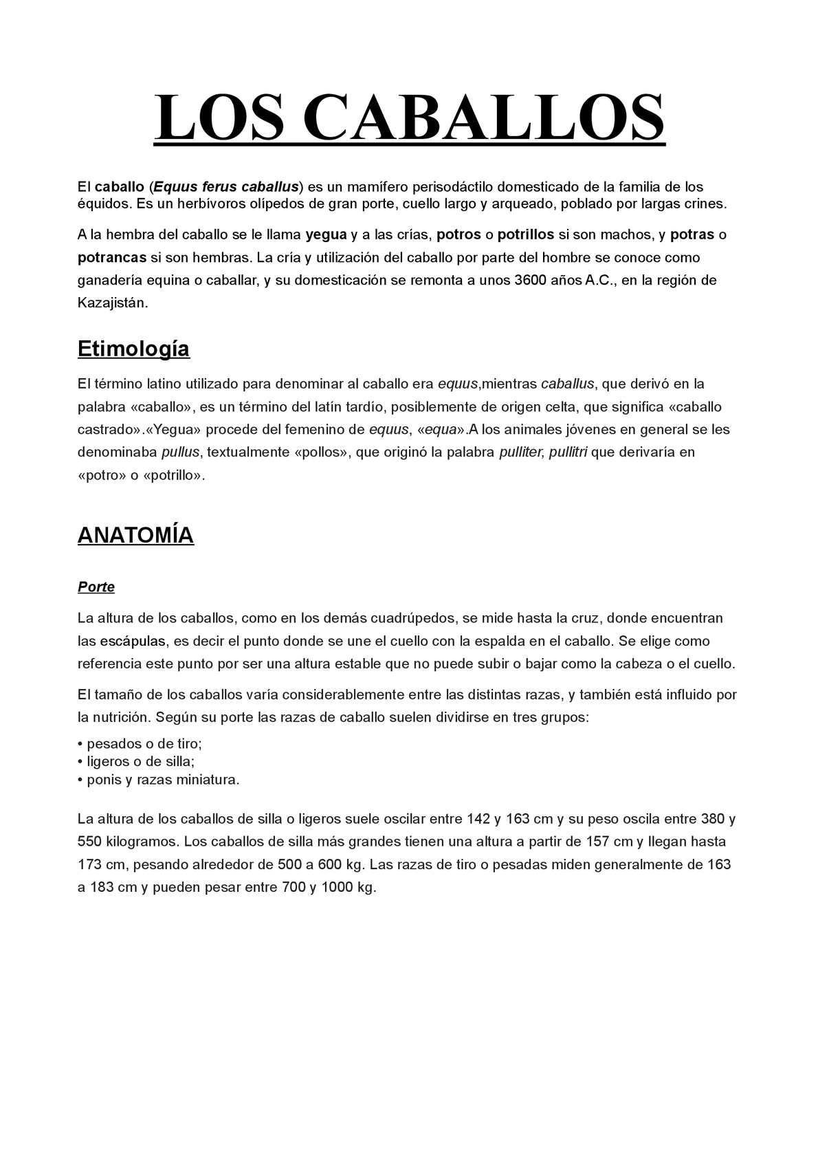 Calaméo - Los Caballos