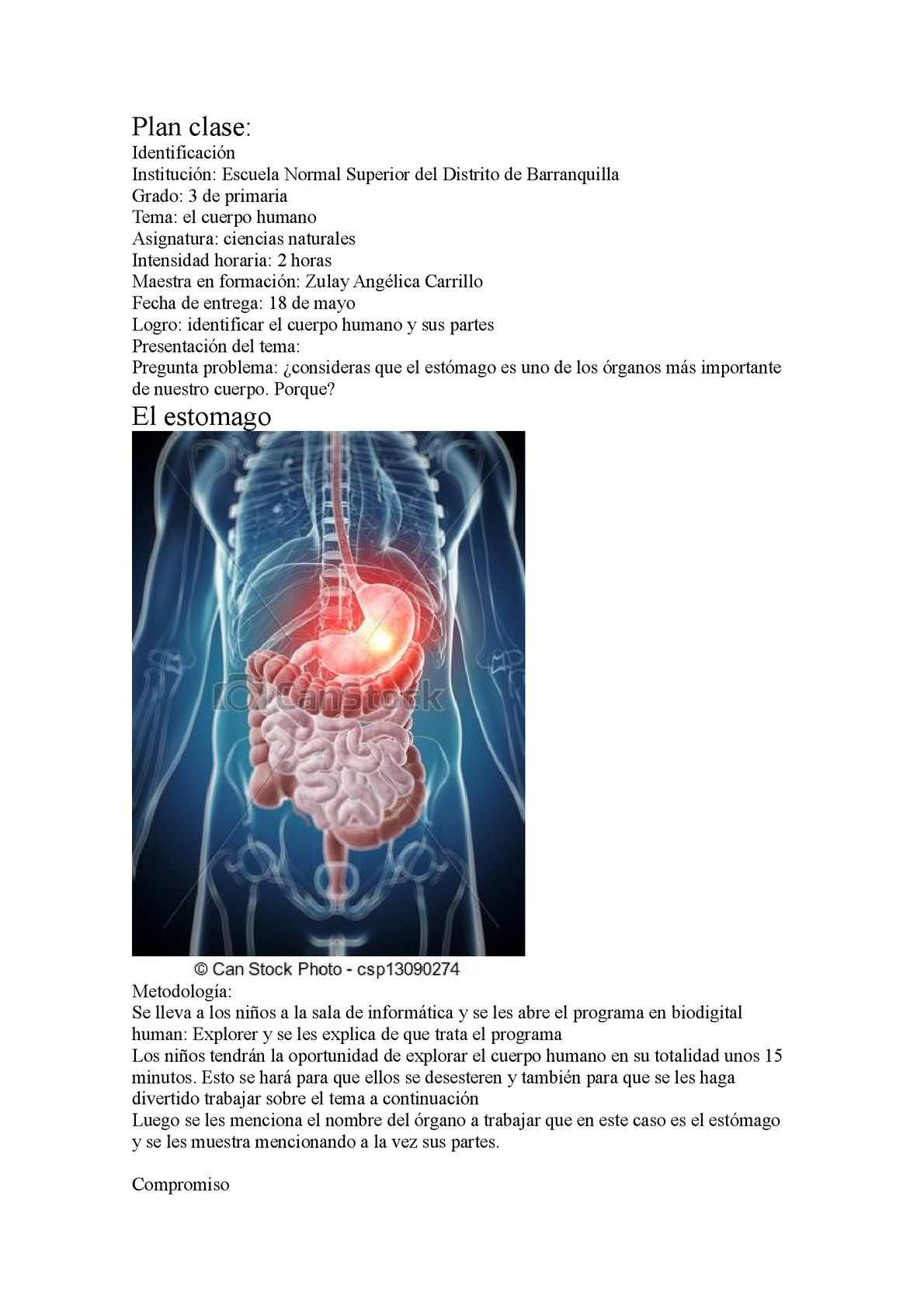 Calaméo - El Estomago