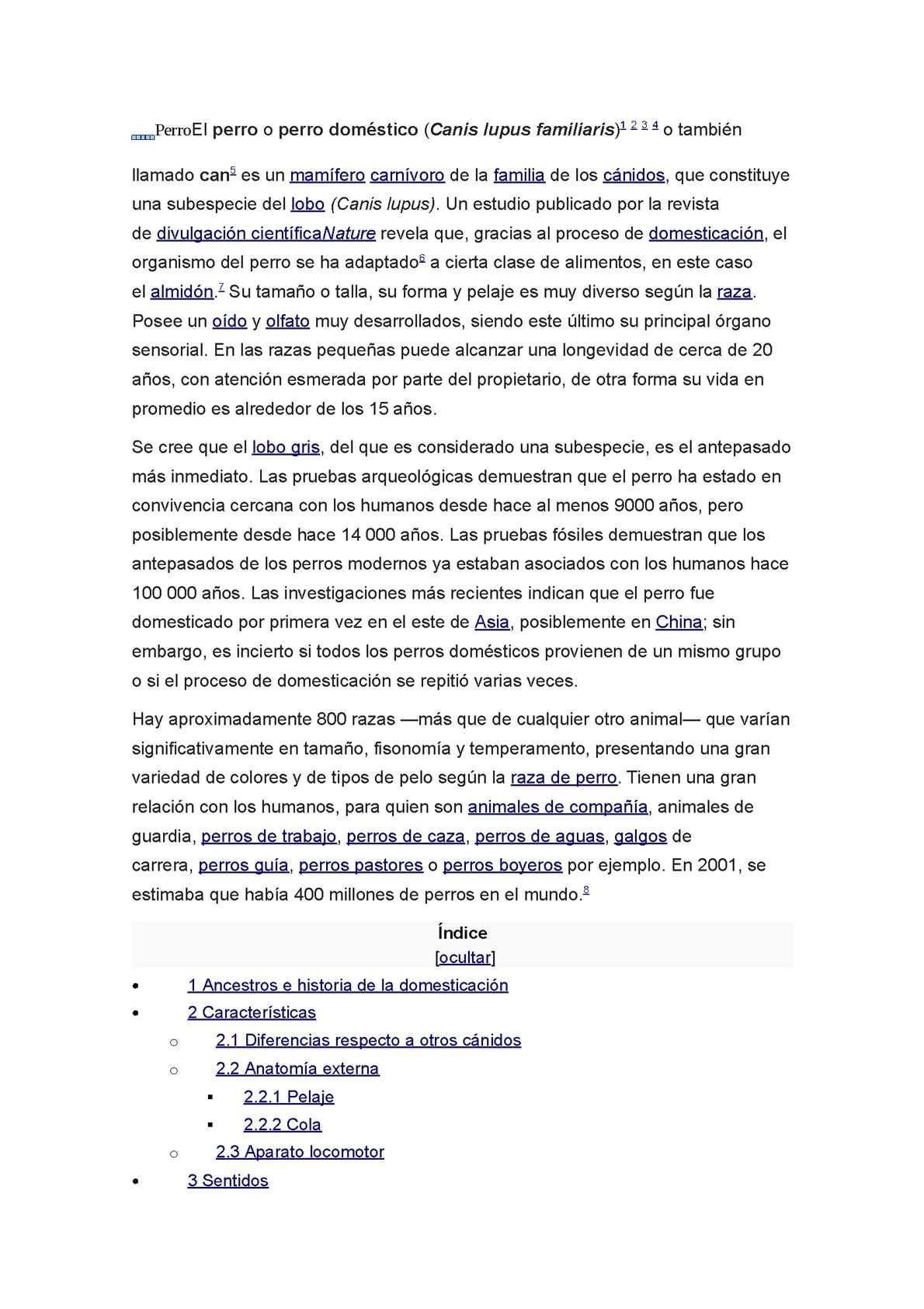 Calaméo - Perro El
